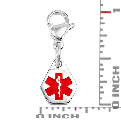 Petite Stainless Steel Medical ID Charm on Lobster Clasp inset 1