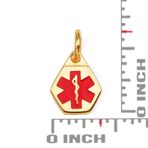 Petite Gold Plated Stainless Medical Alert Charm inset 1