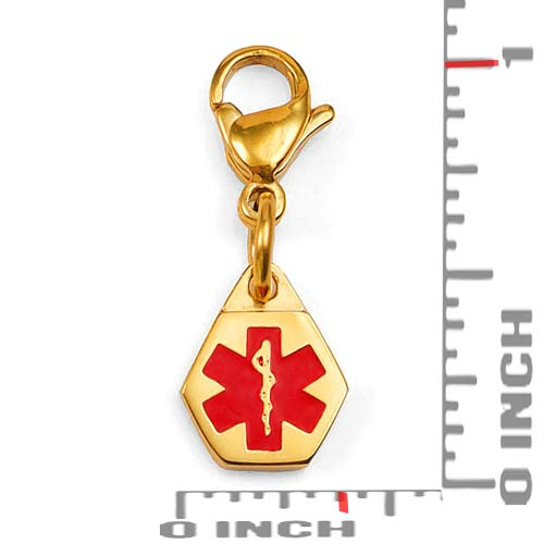 Petite Gold Plated Stainless Medical Charm on Lobster Clasp inset 1
