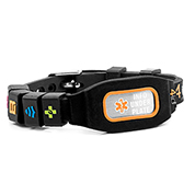 Sports Identication Medical Bracelet - Orange