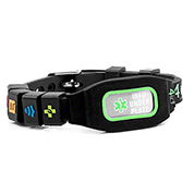 Sports Identification Medical Bracelet - Green