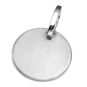LG Brushed Stainless ID Tag for Purses, Pets, & More